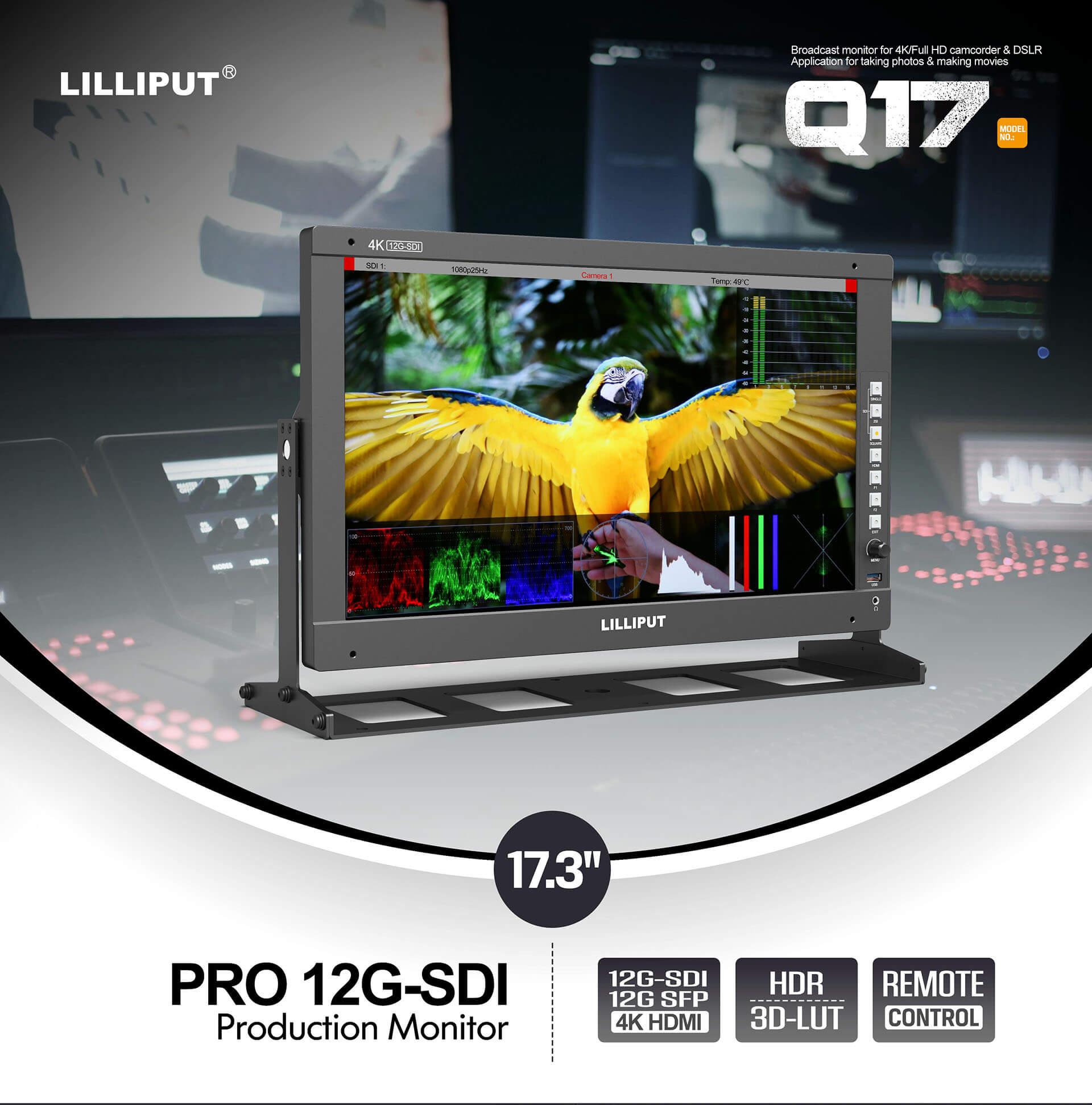Q17 (1)